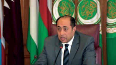 صورة ماذا قال السفير حسام زكي عن الازمة اللبنانية؟