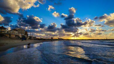 صورة العودة لممارسة العمل داخل بحر #غزة
