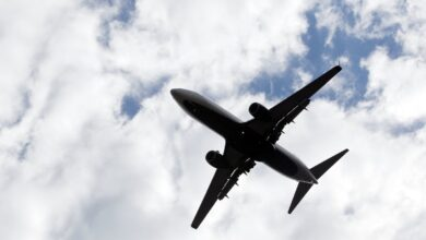 """صورة """"فلاي عقبة"""" شركة طيران جديدة"""